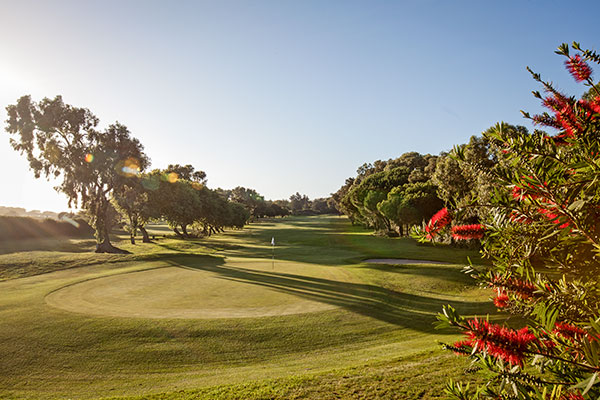 COTM: Rondebosch Golf Club
