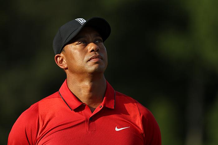 Tiger's back!