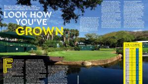Nedbank Golf Challenge preview