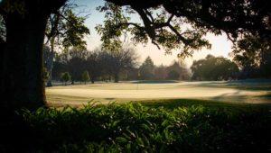 Royal Johannesburg and Kensington Golf Club in winter