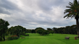 The 6th at Rondebosch GC
