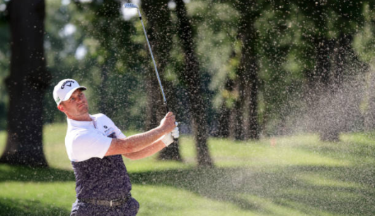 Niemann, Lewis share PGA Tour lead in Detroit